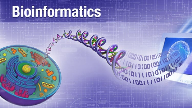 For bioinformatics, which language should I learn first ...