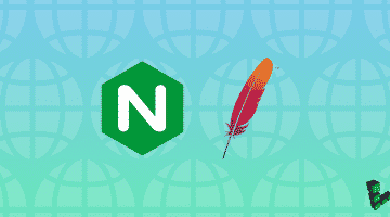 Nginx Along With Apache