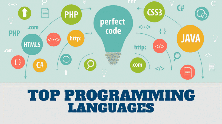 Programming Language for developing website