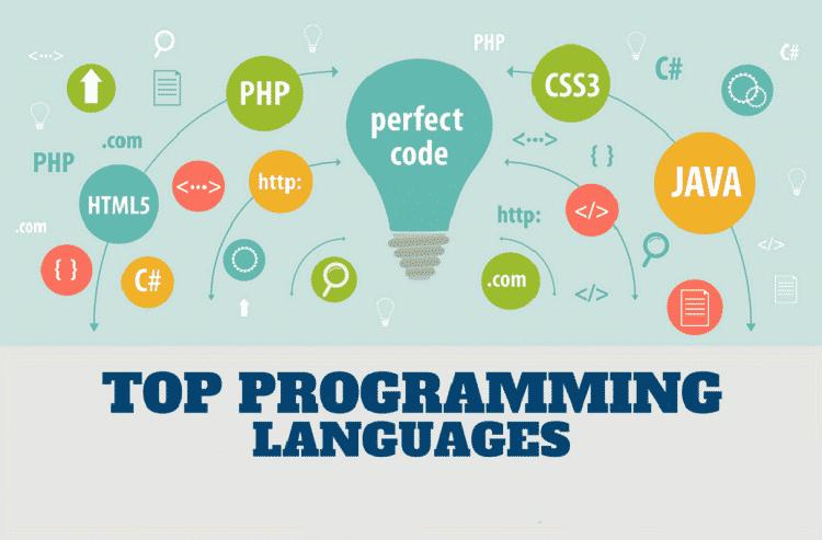 Programming Language for developing website
