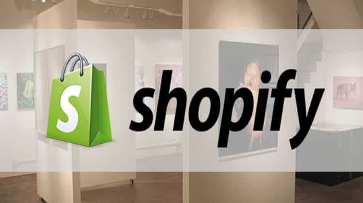 Successful Shopify Business