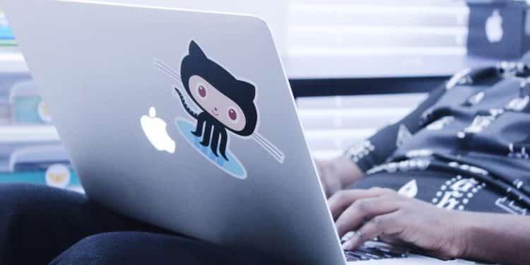 GitHub project resume
