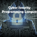 The Best Programming Languages for Cyber Security